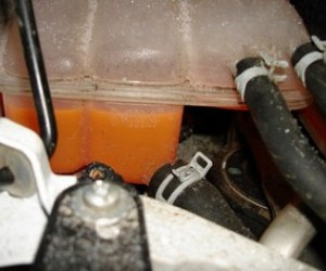 Меняем охлаждающую жидкость (антифриз)  двигателя Форд Фокус 2